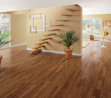 Hard Wood % Vinyl Floor